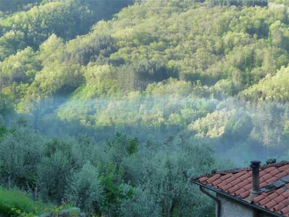 7-morning-mist
