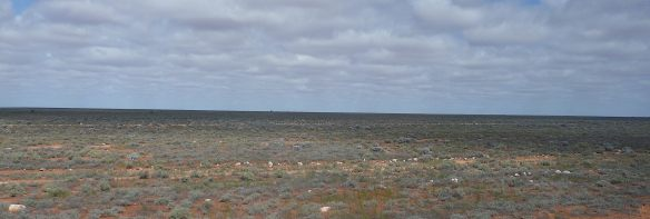 1-nullarbor-plain