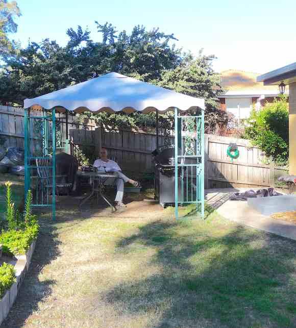 20-garden