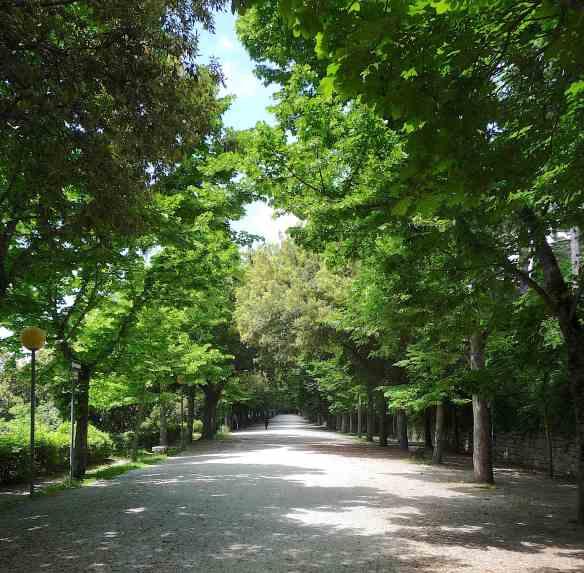 26-parterre-gardens