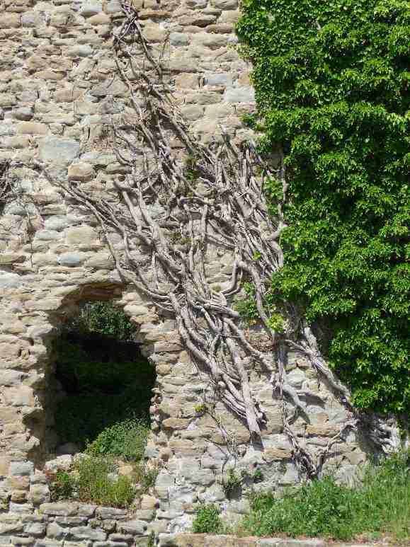 46-fortezza-del-girifalco