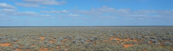 1-the-nullarbor