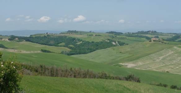 16-tuscany