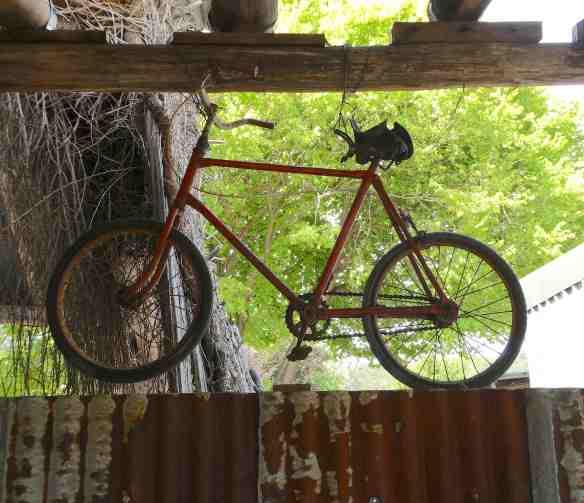10-bike