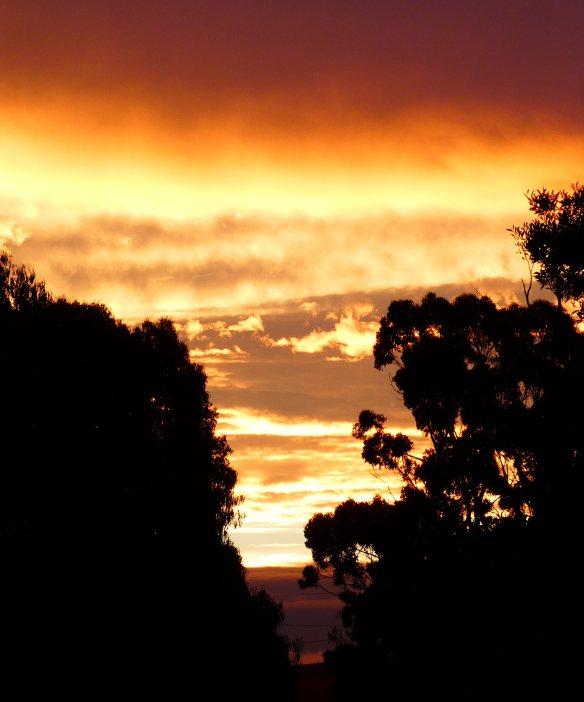 2.sunset