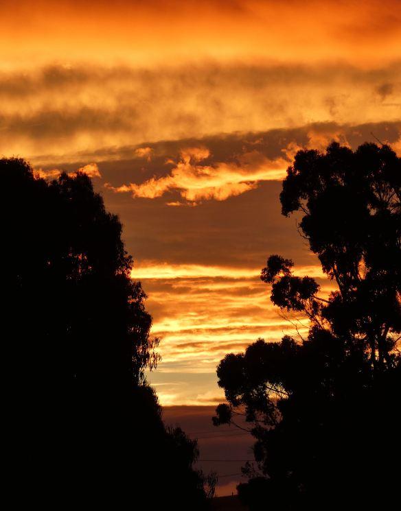 3.sunset