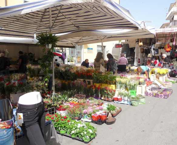 5.market