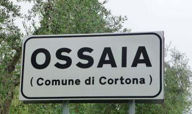 6.Ossaia