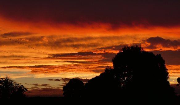 7.sunset