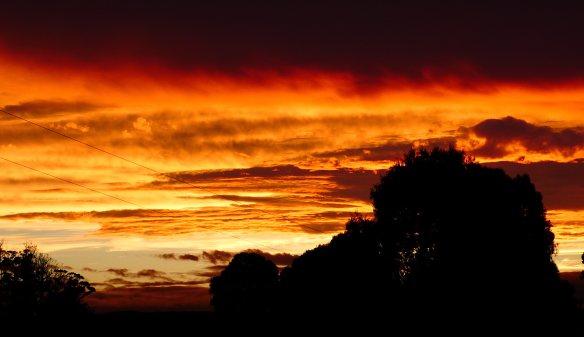 8.sunset