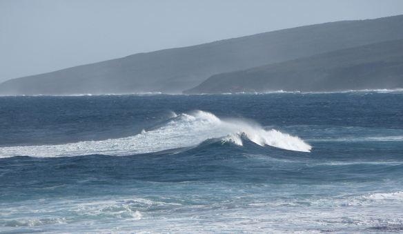 6.Yallingup Reef