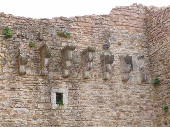 41.Rocca Maggiore