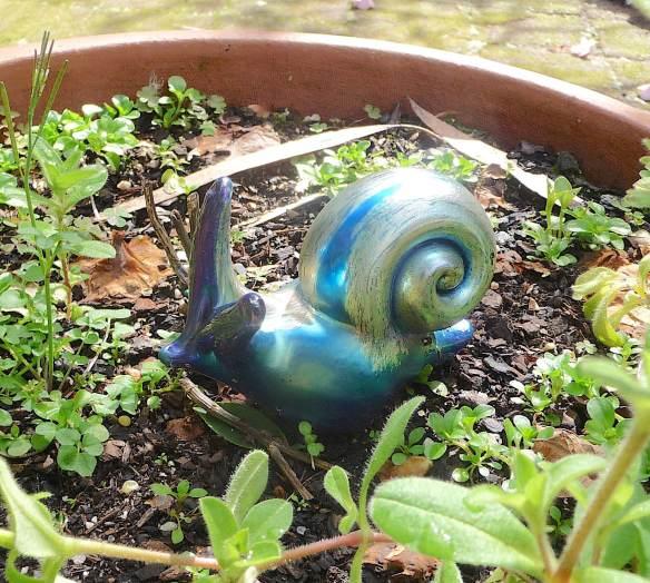 45.snail