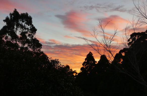 2.pre sunrise