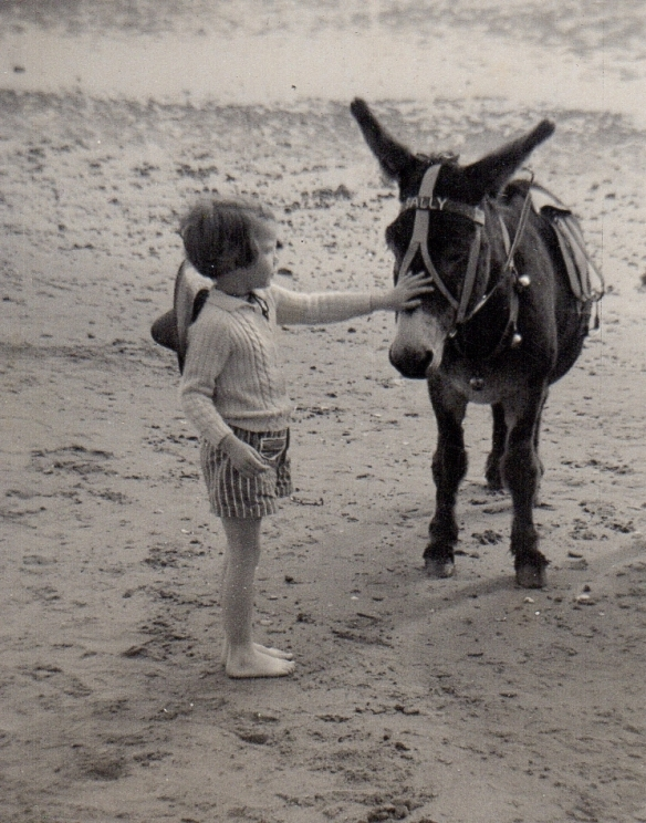 1.me & Sally the donkey
