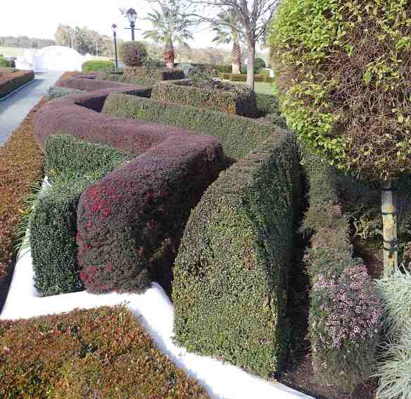 12.topiary hedges