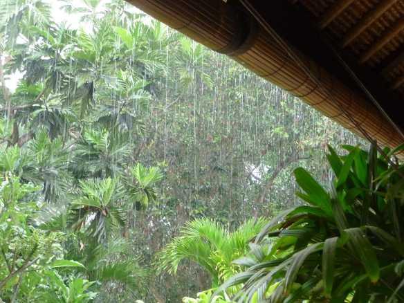 32.rain