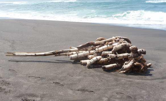 8.seseh beach