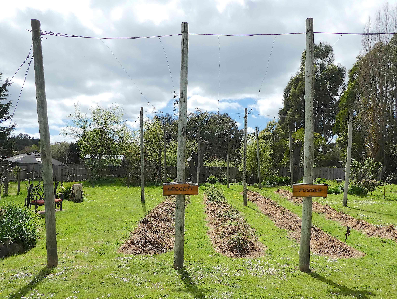 3a.hop garden