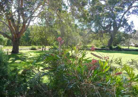 5.garden