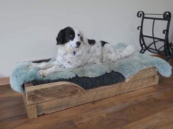 36.Poppy's bed
