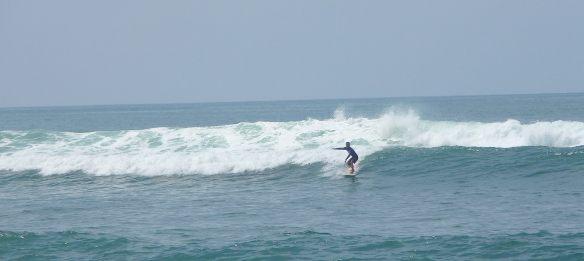 13.surfer