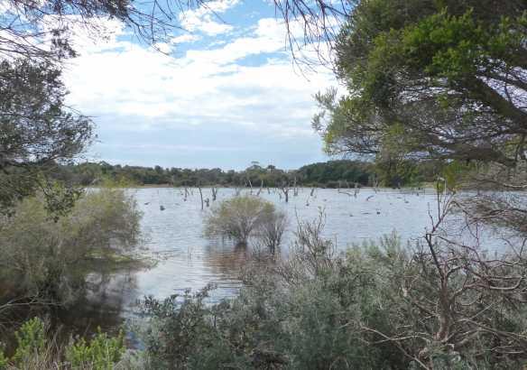 6.Lake Claremont