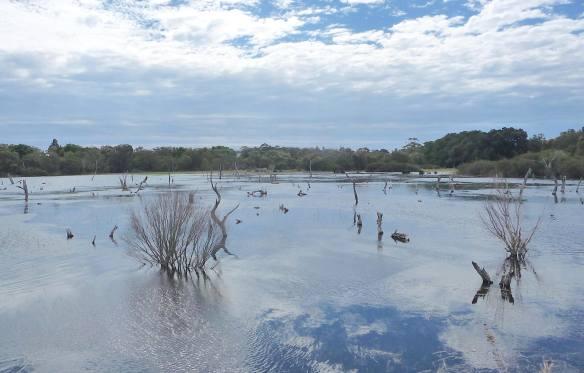 8.Lake Claremont