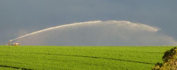 1.irrigator