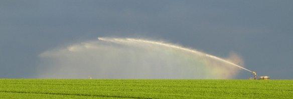 2.irrigator