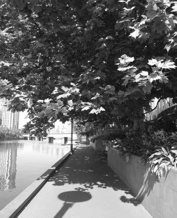 20.Flinders Walk