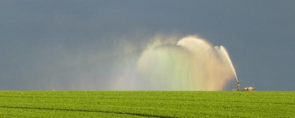 3.irrigator