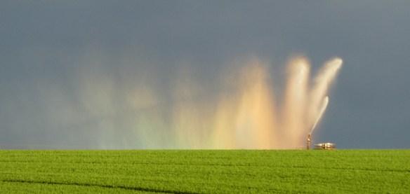 5.irrigator