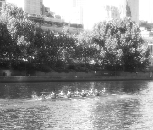 6.rowers
