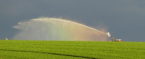7.irrigator