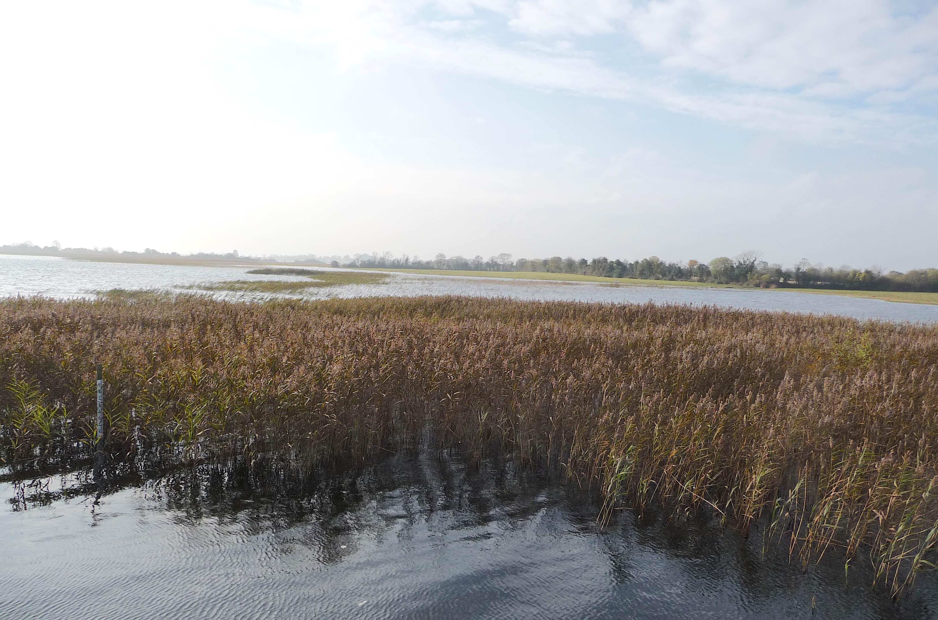 5.Lough Ree
