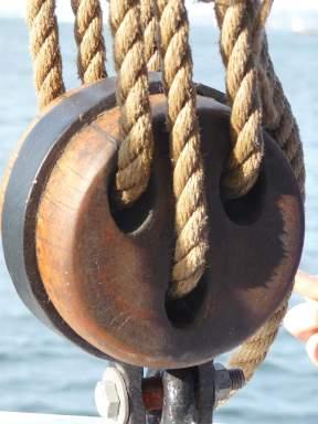 10.pulleys