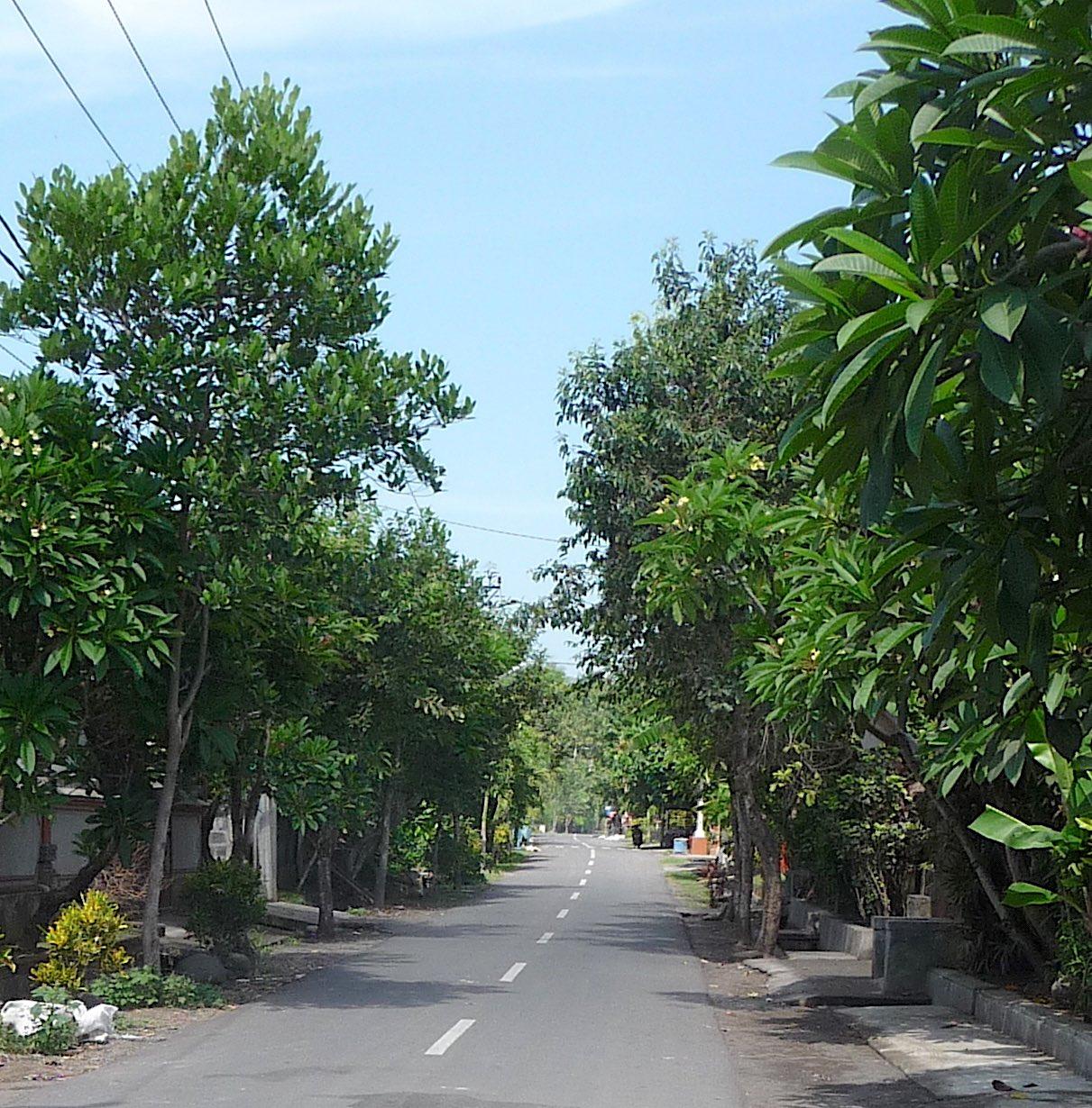 1.main road