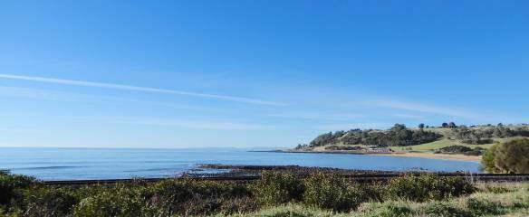 2.Preservation Bay