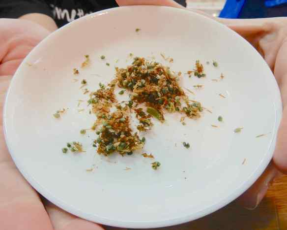 21.green ants