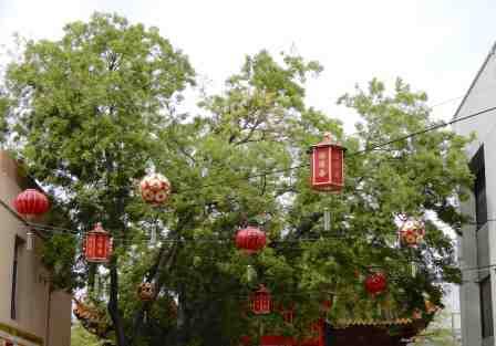 5.lanterns