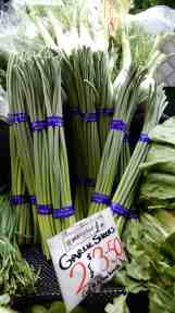 50.garlic shoots