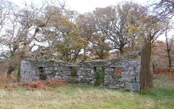 1.ruins