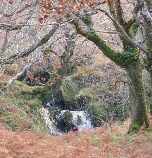 2.waterfall