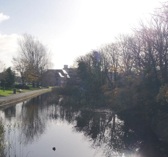 20.Eglinton Canal