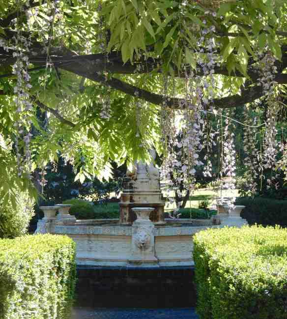 40.Senses Garden