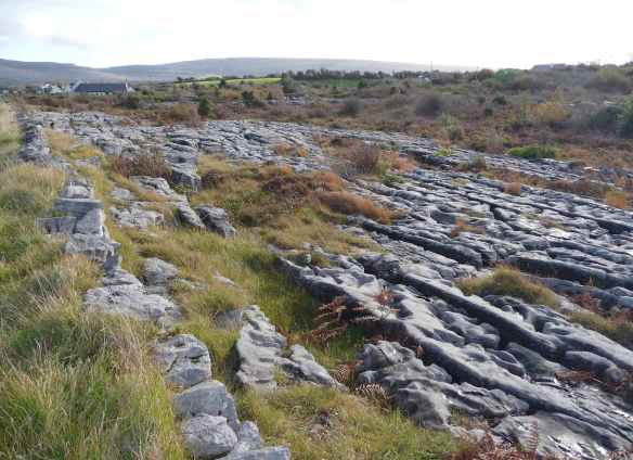 7.the burren
