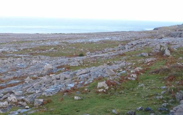 9.limestone karst, doolin