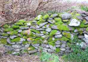 25.stone wall Gallarus Oratory