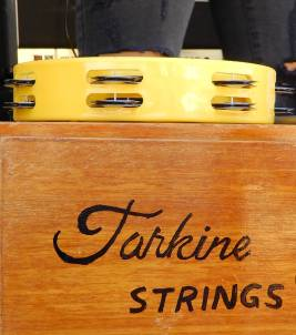 38.Tarkine Strings
